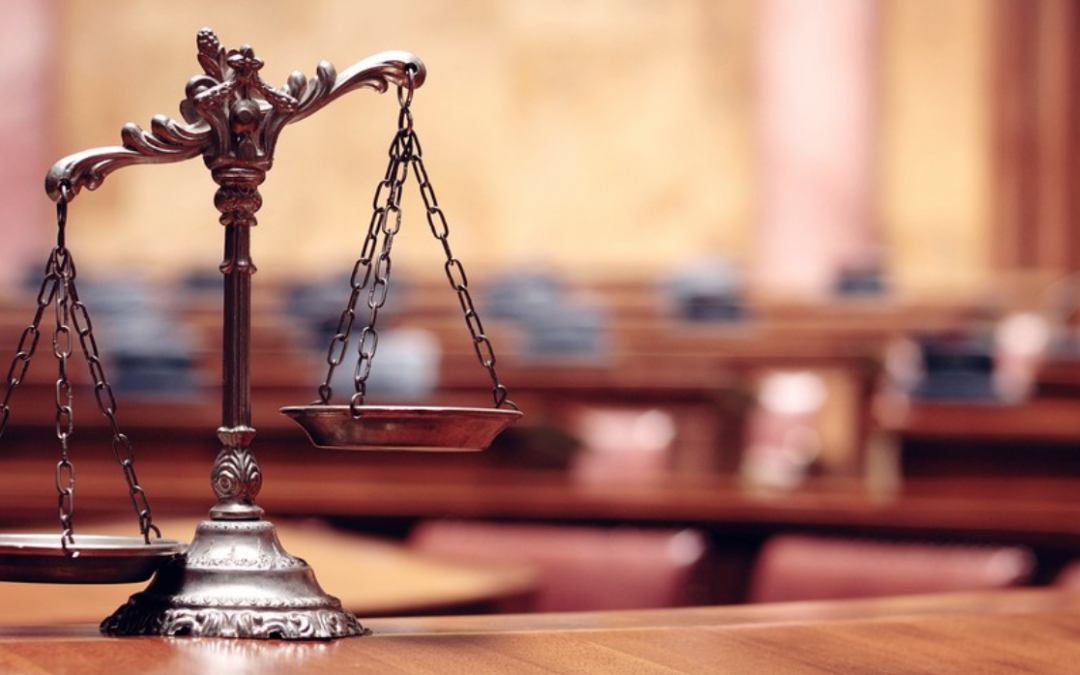 Blog: Why Courts, Part 2: Courts Are Good At Analyzing Equality