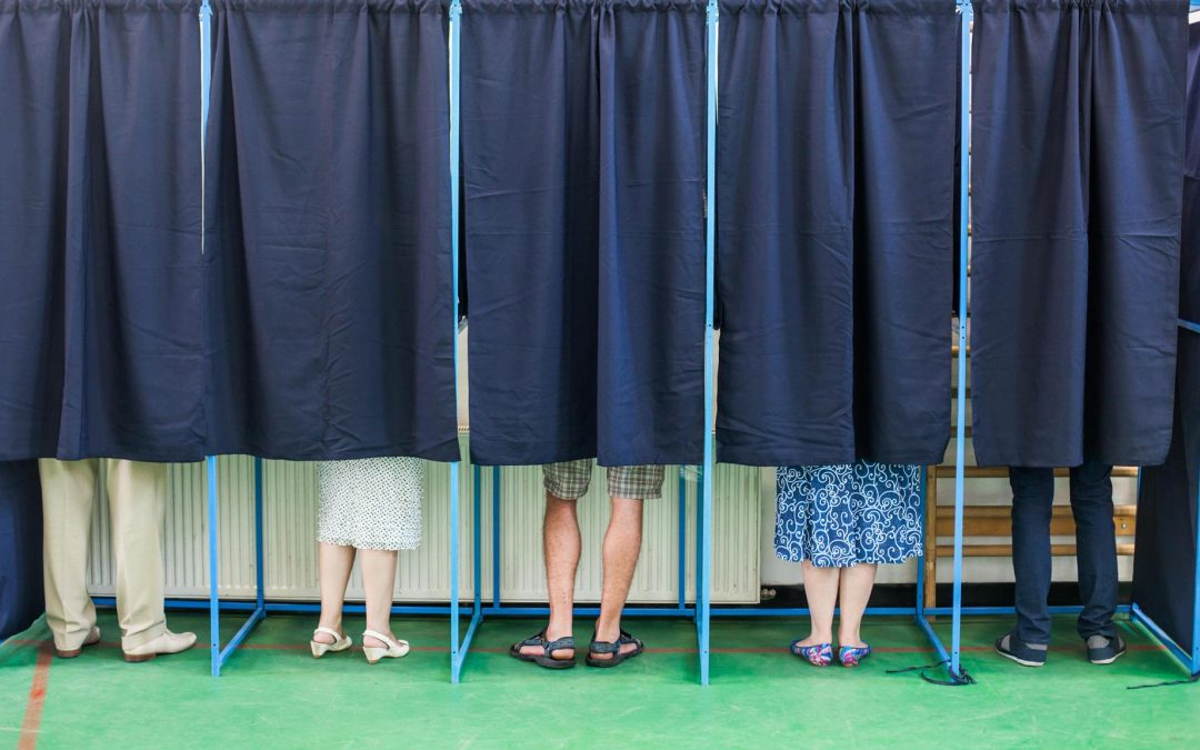 Ozy: Will the 'Live Free or Die' State Usher in Ranked-Choice Voting?